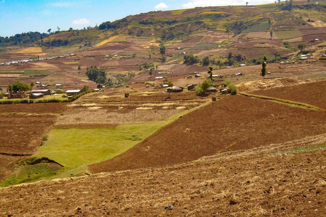 Mailo Land in Uganda